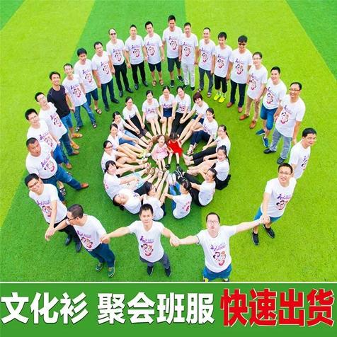 定制t恤企业文化衫广告印字logo同学聚会班